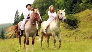 Alexandru Pop - Doi cai suri și o mândruță