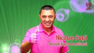 Nicolae Guta - De esti tigan de matase