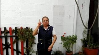 Días de la semana - Lengua de señas CUNOC