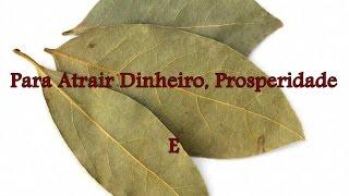 2 Simpatias Com Folhas de Louro Para Atrair Dinheiro, prosperidade e Realização Pessoal
