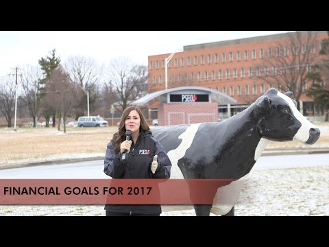 2017 New Year Financial Resolutions and Tips