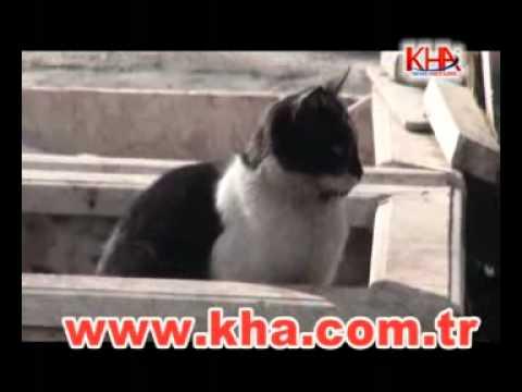 kars dondurucu soğuklar www.kha.com.tr kafkas haber ajansı kha.flv