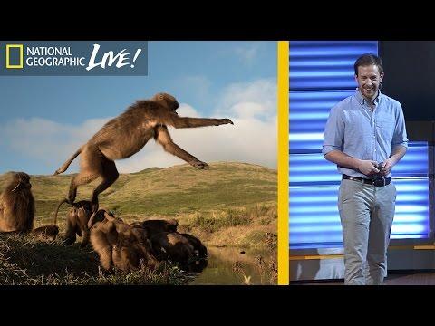 The Fascinating Lives of Bleeding Heart Monkeys (Part 3) | Nat Geo Live