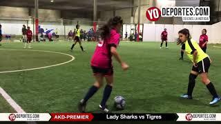 Lady Sharks vs. Tigres AKD Champions Femenil Premier