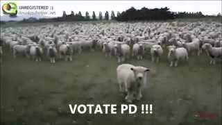 Ecco a voi il Popolo italiano rappresentato in un video/satira!!
