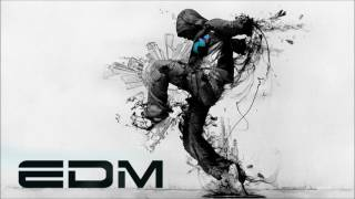 New Electro & House 2013 Best Of EDM Mix mp4