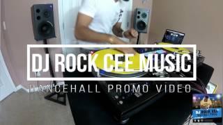 DJ Rock cee  - Success and Strive Riddim Mix [DANCEHALL PROMO VIDEO]