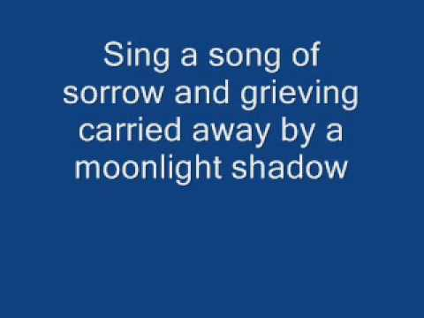 groove-coverage-moonlight-shadow-christin630