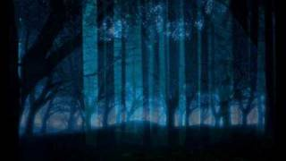 Jeremy Soule - Forest Night (Music Video)