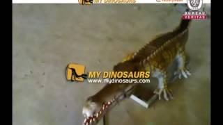 Remote control realistic animatronic crocodile model
