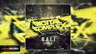 B.A.L.I - SHANK (Original Mix)