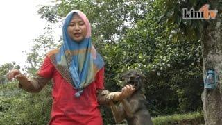 Norashikin, the animal rescuer