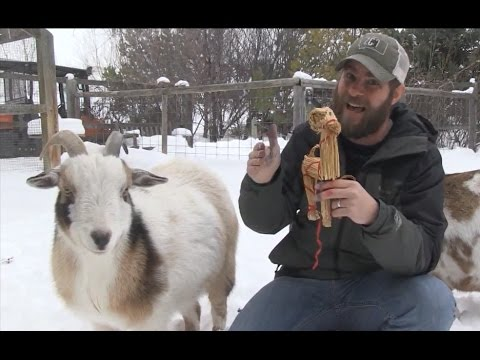 You'll love this Yule goat tradition
