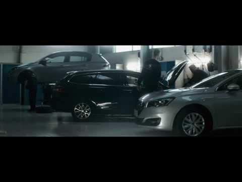 Peugeot Service 5+ & 10+
