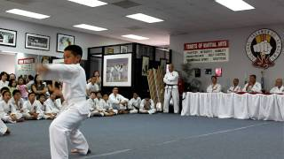 Tae Kwon-Do White Belt Test