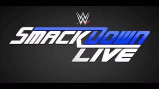 "WWE SmackDown New Era Theme Song ""Take A Chance""."