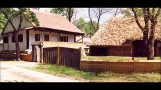 Ani Nicoara - Pe valea Muresului