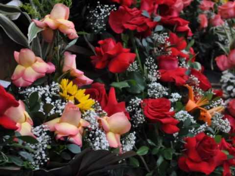 Flowers from Ecuador