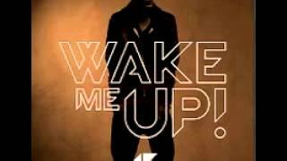 avicii wake me up (radio edit)