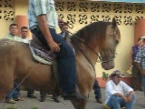 Horse Parade All Day Long – Juigalpa, Nicaragua