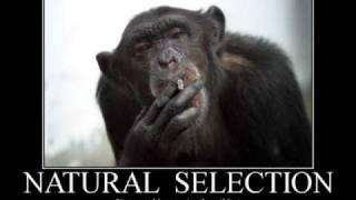 DJ Deekline - I Don't Smoke Da Reefa