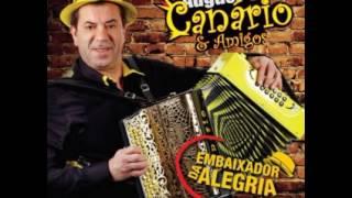 Augusto Canario & Amigos Embaixador da Alegria