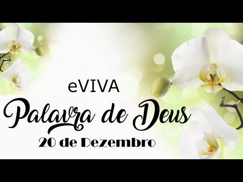 PALAVRA DE DEUS PARA HOJE 20 DE DEZEMBRO eVIVA MENSAGEM MOTIVACIONAL PARA REFLEXÃO DE VIDA