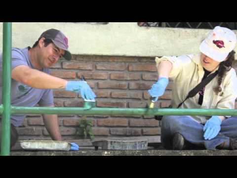 Nicaragua Mission Trip 2012