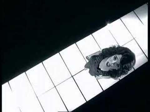 Amor de Rosal Letra y Video