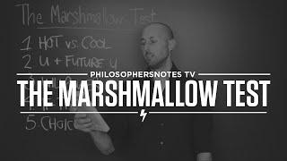 Marshmallow Test 1/2