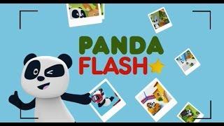 PANDA FLASH - Festival Panda 2016