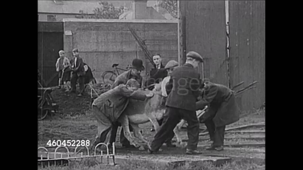 Rare Film Clips of Dublin in the 1930s/40s