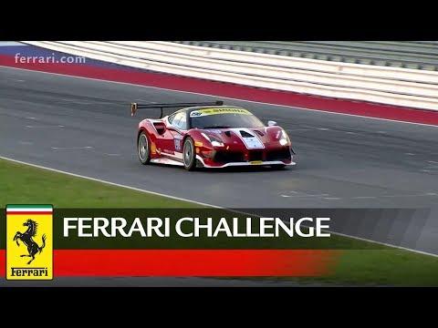 Ferrari Challenge Europe - Misano 2018, Coppa Shell Race 1