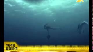 CQTV:美人鱼如何做爱? 隐藏性器官会自动弹出
