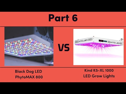 Black Dog LED PhytoMAX 800 vs. Kind K5-XL1000 LED Grow Lights - Part 6