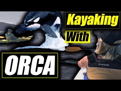 Kayaking with killer whales San Juan Island Orca chain Washington