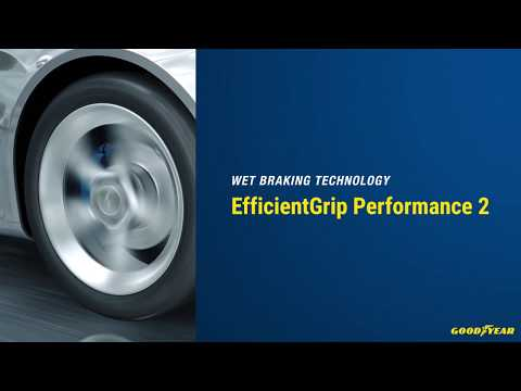 EfficientGrip Performance 2 | Wet Braking Technology