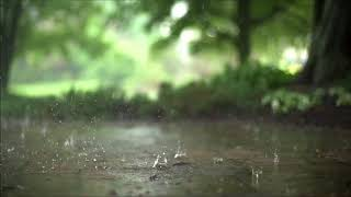 Rain Sounds   12 HOURS High Quality   Relaxing Sounds Thunder, Sleeping, Studying, Meditation
