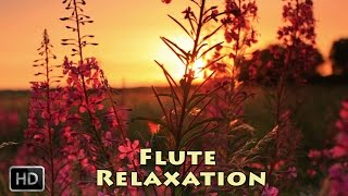 Relaxing Flute Music – Instrumental Music for Meditation, Deep Sleep, Reiki and Study Music