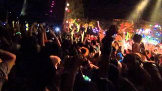 Seek Bromance - Avicii @ Nocturnal Wonderland 2011 LIVE
