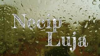 "NECIP - ""LUJA"" | ""Лъжа"" (Official Song), 2018"