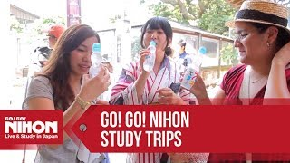Go! Go! Nihon Study Trips for Japanese Language and Cultural Immersion in Japan