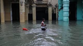 Après le passage d'Irma, l'île de Cuba ravagée