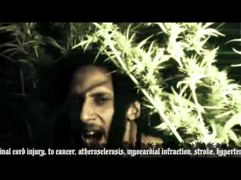 julian-marley-boom-draw-official-video-jermaine-forde