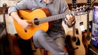 Valencia VC204H İnce Saplı Mat Klasik Gitar
