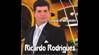 VOCÊ VAI VENCER RICARDO RODRIGUES