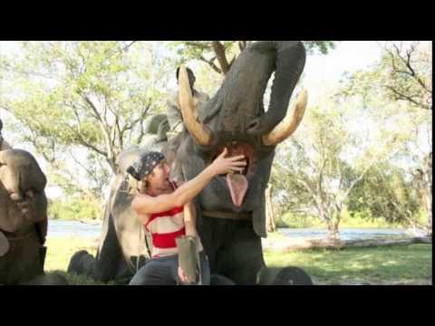 Ryan's African Adventure – Part 1