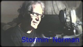 Live It Up -cover -Stormin' Norman