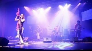 Pink - Aerosmith Rocks Tribute Band