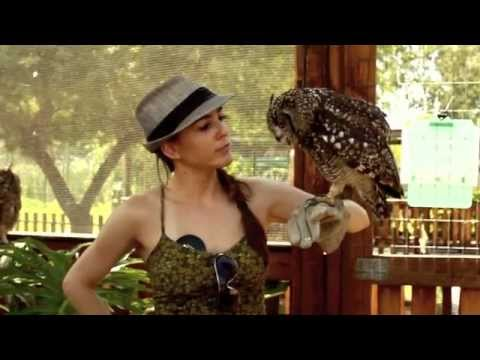 African Owls and Exotic Bird Sanctuary at Spier in Stellenbosch with Laura Grier